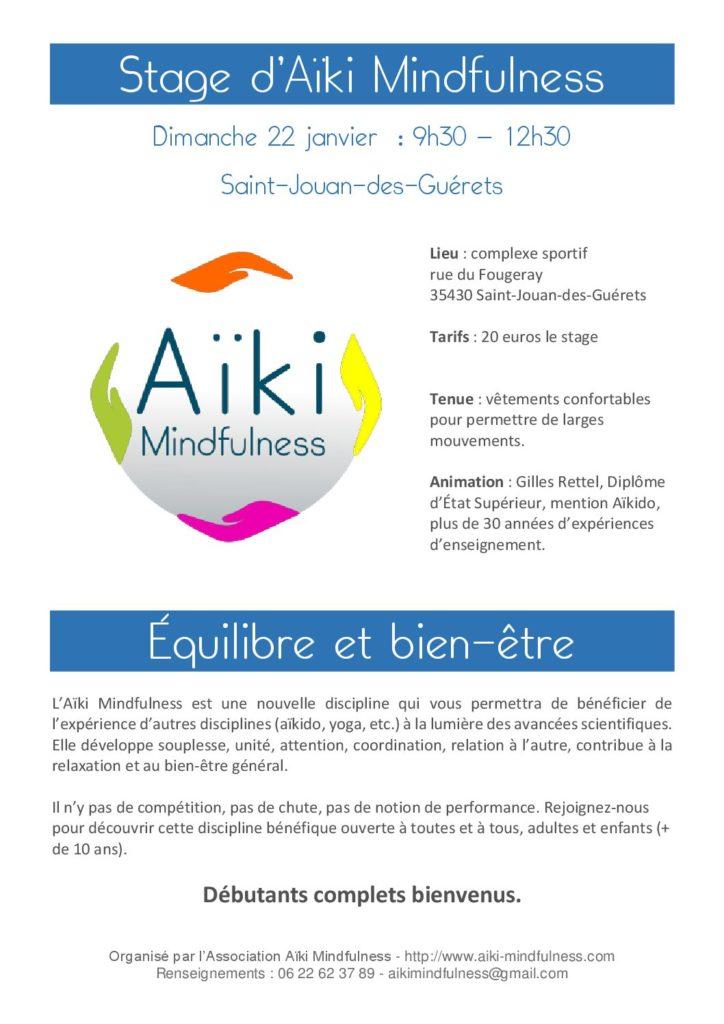 Stage aiki mindfulness 22 janvier 2017