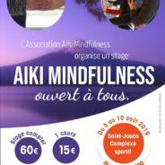 Nouvelle affiche pour le stage aïki mindfulness